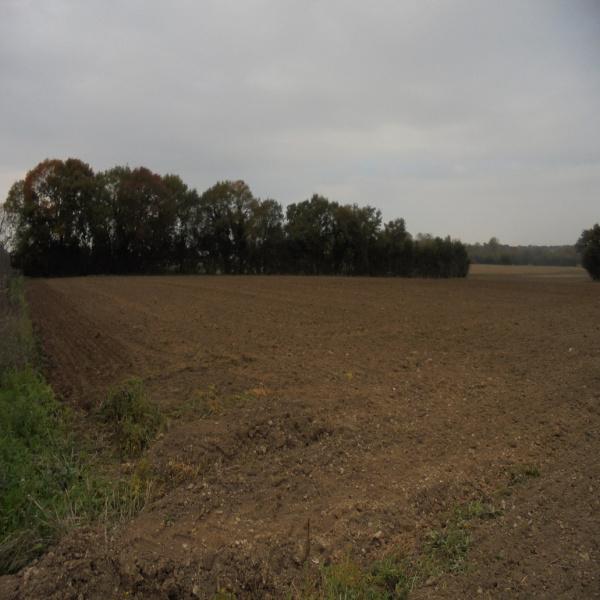 Offres de vente Terrain Saint-Romans-des-Champs 79230